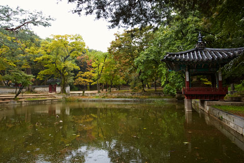 Le jardin secret de Changdeokgung