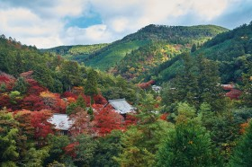 In the Mountains of Kyoto